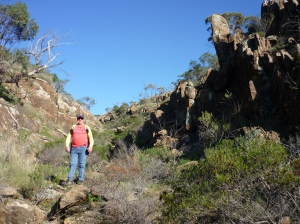Bendaldy Ranges 2015 034