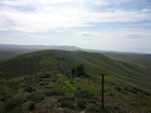 Mt Cone 2015 006