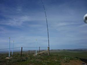 Mt Cone 2015 009