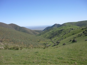 Mt Jay 5015 006