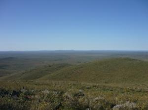 Pualko Kanaka ridge 2015 020