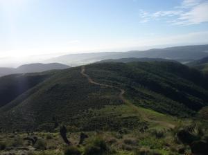 Mt Arden 001