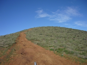 Mt Arden 005